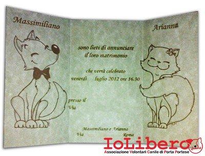 Adozioni cani canili di roma avcpp iolibero - Porta portese messaggi ...
