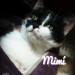 mimi1