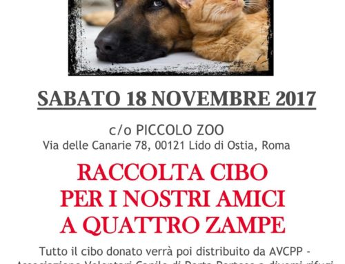 SABATO 18 NOVEMBRE 2017 RACCOLTA DI CIBO al PICCOLO ZOO di OSTIA