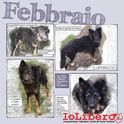2_Calendario_IoLibero2015_FEB