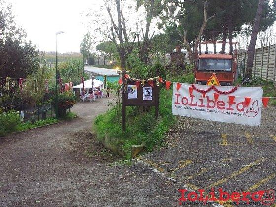 Festa Natale Cinodromo 16dic12 (3)