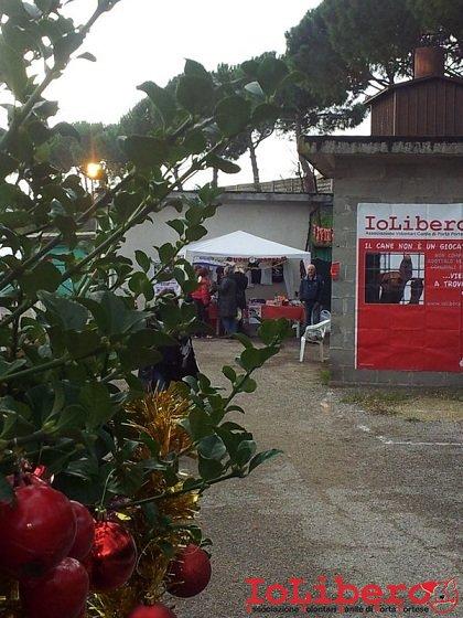 Festa Natale Cinodromo 16dic12 (7)