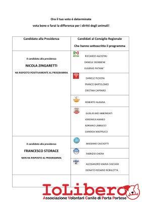2_Programma Regionali 2013 + Candidati
