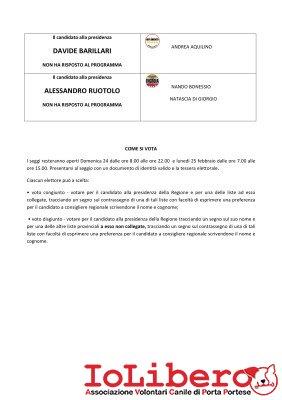 3_Programma Regionali 2013 + Candidati