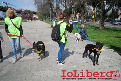 MILLY_2014 marzo 1