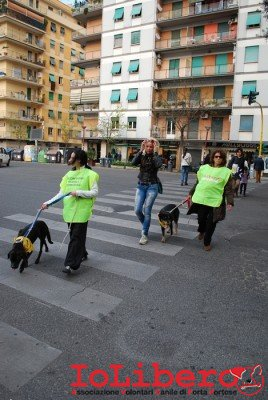 MILLY_2014 marzo 14