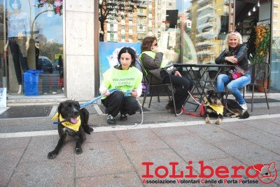 MILLY_2014 marzo 17