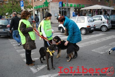 MILLY_2014 marzo 19