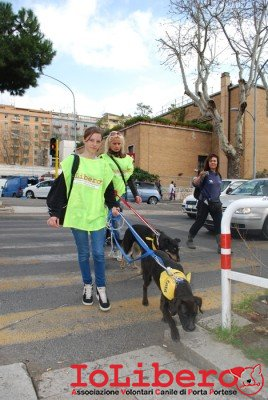 MILLY_2014 marzo 6
