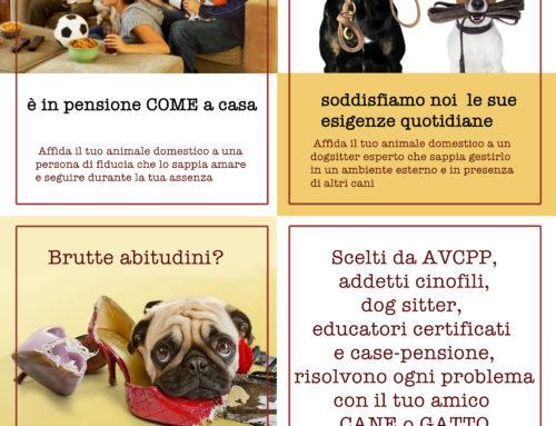 Dog/cat sitter e pensioni casalinghe AVCPP