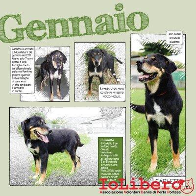 1_Calendario_IoLibero2015_GEN