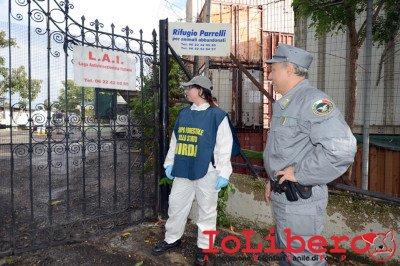 forestale sequestro parrelli (4)