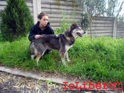 08-irene con Sander