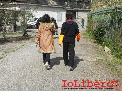 18-ilaria e visitatrice