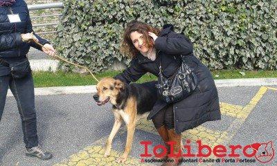 lory_luigi2