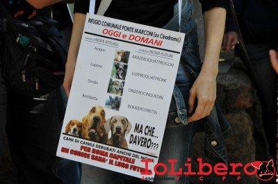 manifestazione10maggio14_0002
