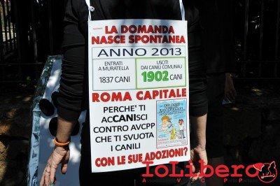 manifestazione10maggio14_0006