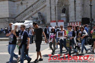manifestazione10maggio14_0044