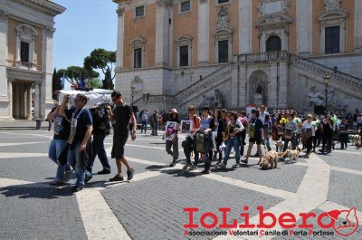 manifestazione10maggio14_0047