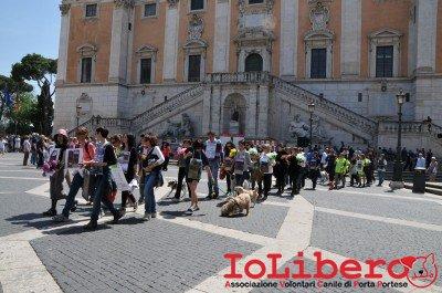 manifestazione10maggio14_0049