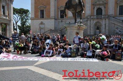 manifestazione10maggio14_0063