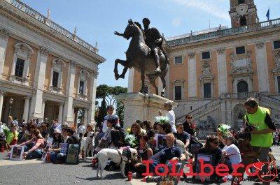 manifestazione10maggio14_0068