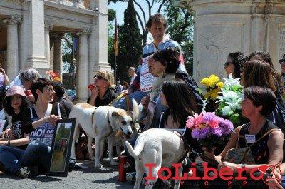 manifestazione10maggio14_0072
