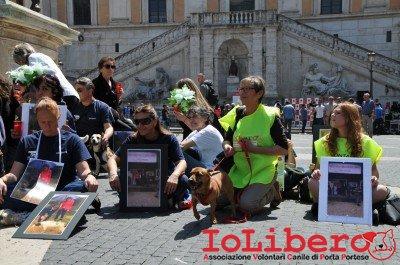 manifestazione10maggio14_0077
