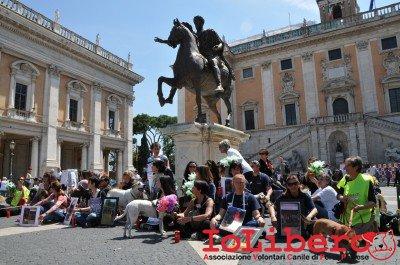manifestazione10maggio14_0078