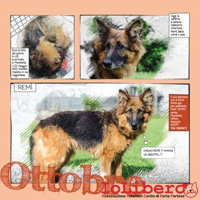 10_Calendario_IoLibero2015_OTT