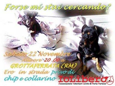 facebook_1416833748885
