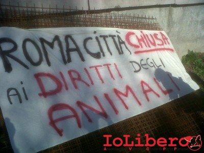 Roma-20121124-00054-400x300