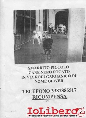 oliver038