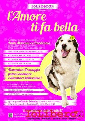 A3Locandina_bellezza