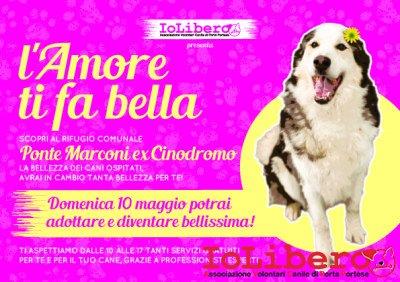 A5Fronte_Festa_della_bellezza