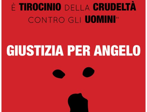 UNITI PER ANGELO…PER NON DIMENTICARE…PER CHIEDERE GIUSTIZIA!!! ECCO LE FOTO