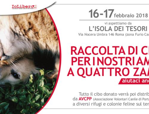 ECCO LE FOTO DELLA RACCOLTA CIBO venerdì 16 e sabato 17 febbraio 2018 a L'ISOLA DEI TESORI