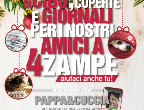 VENERDI 30 NOVEMBRE 2018 RACCOLTA CIBO DA PAPPA & CUCCIA