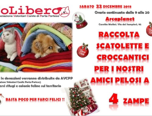 22 DICEMBRE 2018 RACCOLTA CIBO ARCAPLANET CENTRO COMMERCIALE CASETTA MATTEI