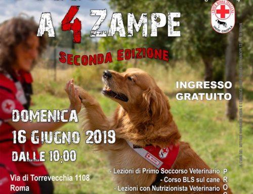 SOCCORSO A 4 ZAMPE II a Edizione  DOMENICA 16 GIUGNO 2019