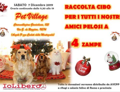 ECCO ALTRE FOTO CON LE PRIME DONAZIONI!!!!PET VILLAGE RACCOLTA CIBO SABATO 7 DICEMBRE 2019