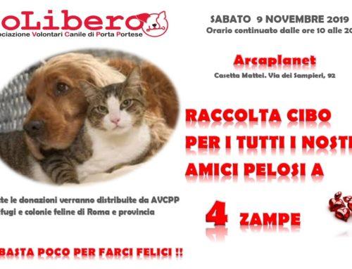 CONSEGNATO TUTTO IL CIBO!!!ECCO LE FOTO!RACCOLTA CIBO sabato 9 novembre 2019 ARCAPLANET Centro Commerciale di Casetta Mattei