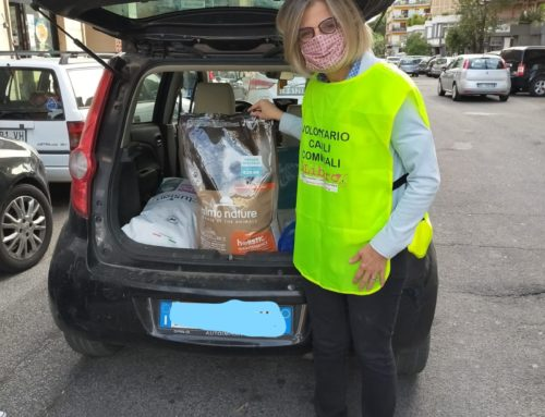 DOPPIO GRAZIE A PET VILLAGE PER LA SUA DONAZIONE!