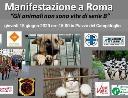 """Manifestazione a Roma 18.06.2020 """"Gli animali non sono vite di serie B"""""""