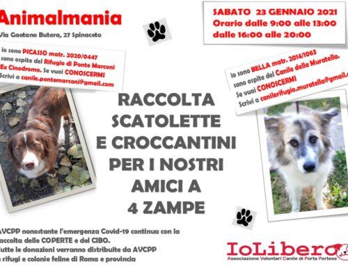 GIORNATA DI RACCOLTA CIBO E COPERTE DA ANIMALMANIA SABATO 23 GENNAIO 2021