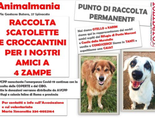 CONSEGNA EFFETTUATA! ANIMALMANIA RACCOLTA PERMANENTE DI CIBO