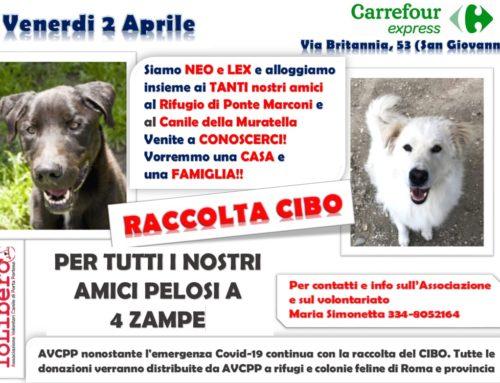 GRAZIE DELLE DONAZIONI!GIORNATA DI RACCOLTA CIBO Venerdì 2 aprile 2021 CARREFOUR express Via Britannia 53
